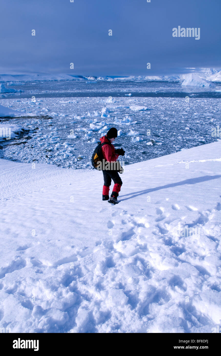 A lone tourist at Charlotte Bay in Antarctica - Stock Image