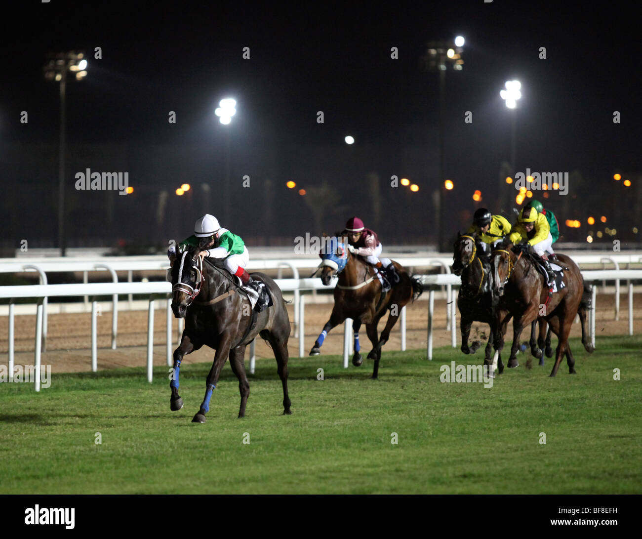 Action on the New Rayyan racecourse, in Doha, Qatar, at the Nov 5, 2009 meet - Stock Image