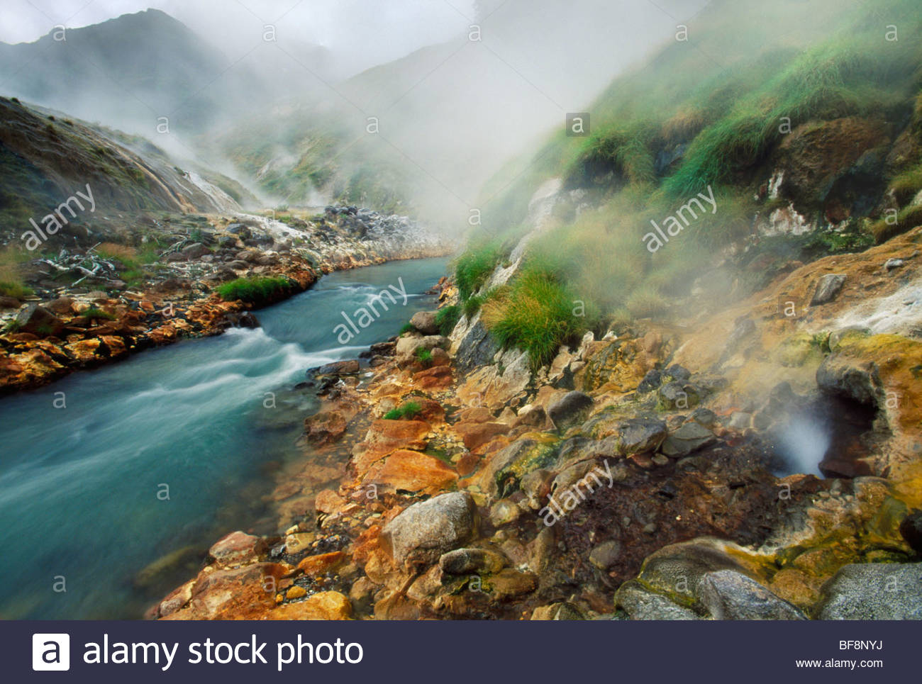 Fumaroles, Valley of the Geysers, Kronotsky Nature Reserve, Kamchatka, Russia - Stock Image