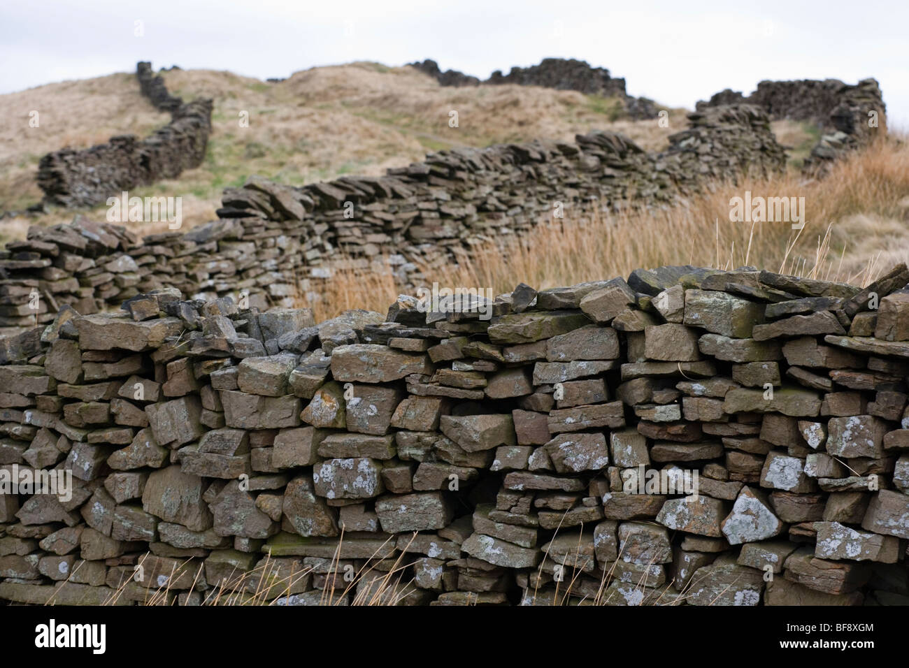 Dry Stonewalls On Wild Moor in the Goyt Valley near Buxton in Derbyshire - Stock Image