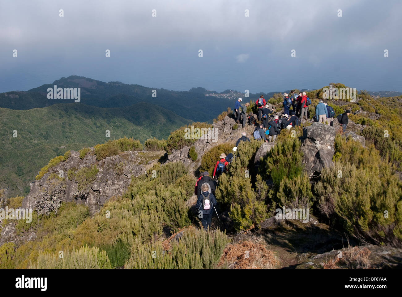 Pico Ruivo is the highest peak on the Madeira Islands. Touring party on the slopes. Coastal vegetation. Coastline. - Stock Image