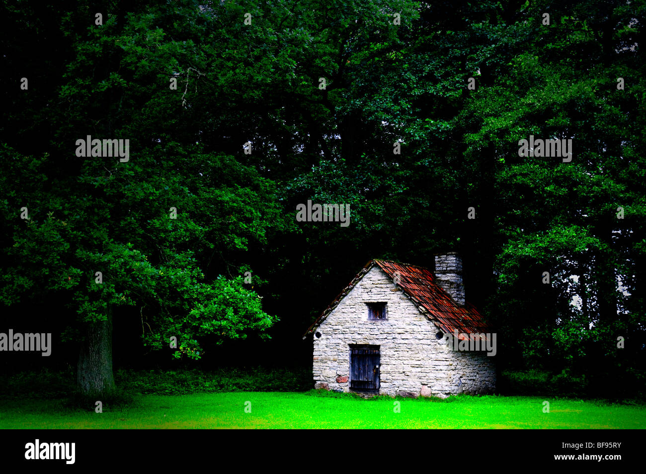 A cottage in the woods - Stock Image