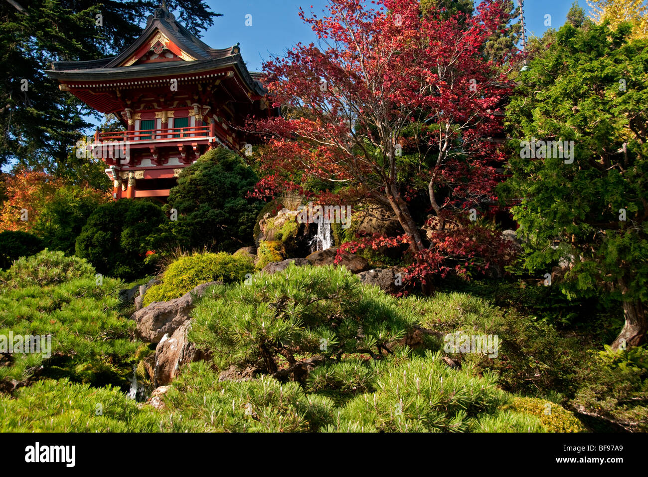 Japanese Tea Garden San Francisco Stock Photos & Japanese Tea Garden ...