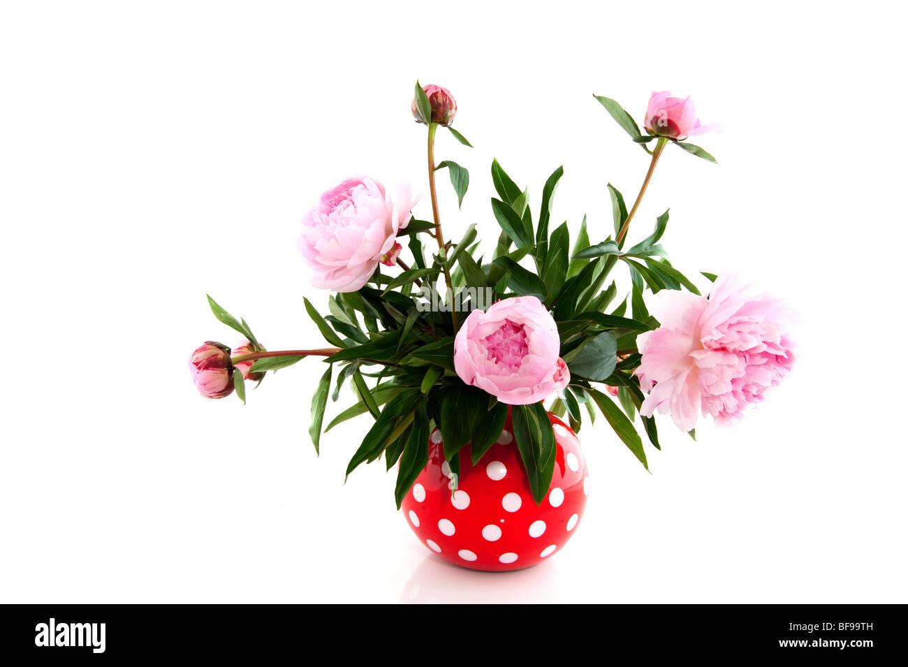 Bouquet with common peony stock photos bouquet with common peony bouquet with common peony in speckles vase stock image izmirmasajfo