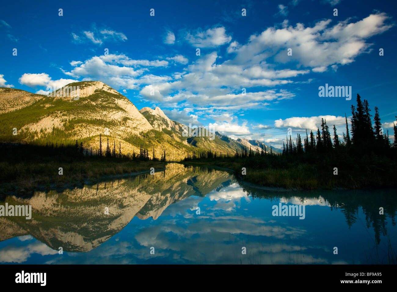 Colin mountain range viewed from Athabasca River Valley, Jasper National Park, Alberta, Canada - Stock Image