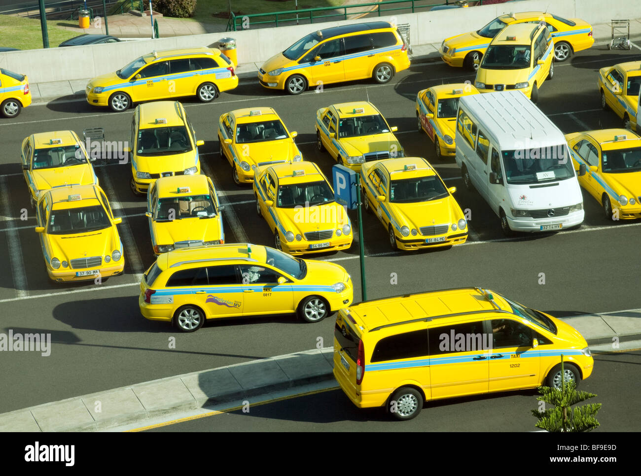 Yellow taxi cabs in a taxi rank, Funchal, Madeira - Stock Image