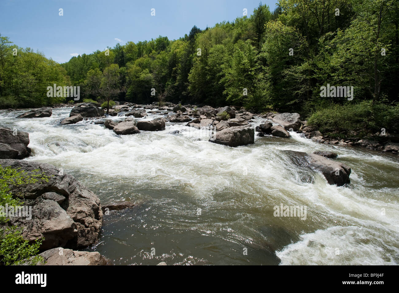 Whitewater on the Upper Youghageny River near Friendsville MD - Stock Image