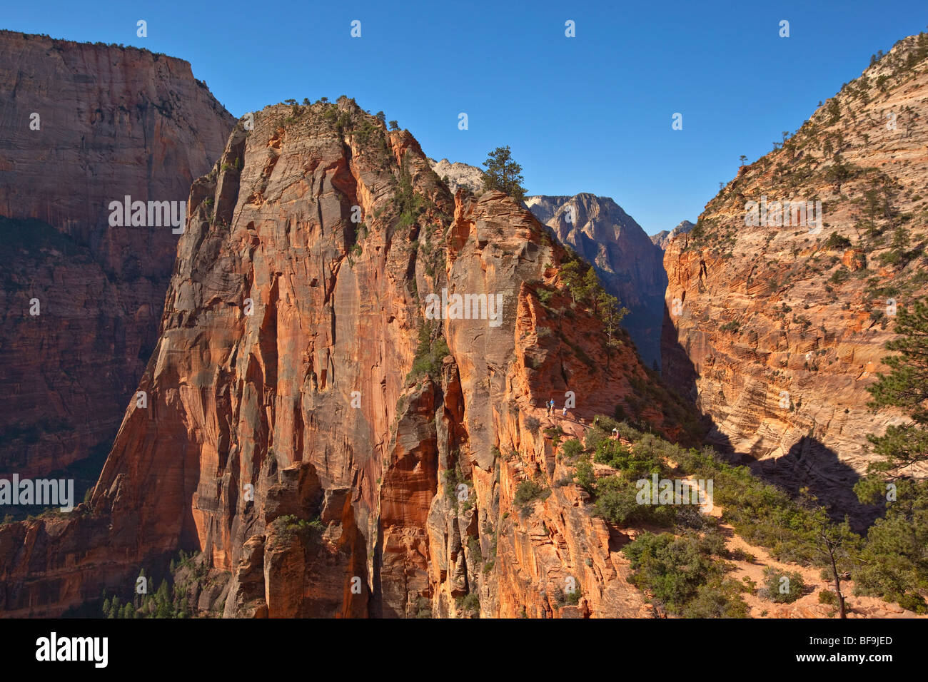 angels landing viewed from west rim trail at scouts lookout zion