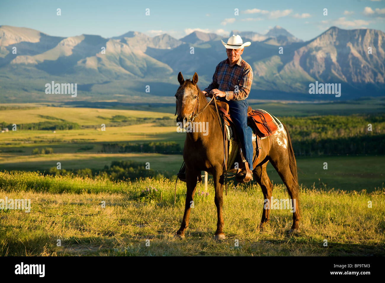 cowboy near Waterton Lakes National Park, Alberta, Canada (no model release) - Stock Image