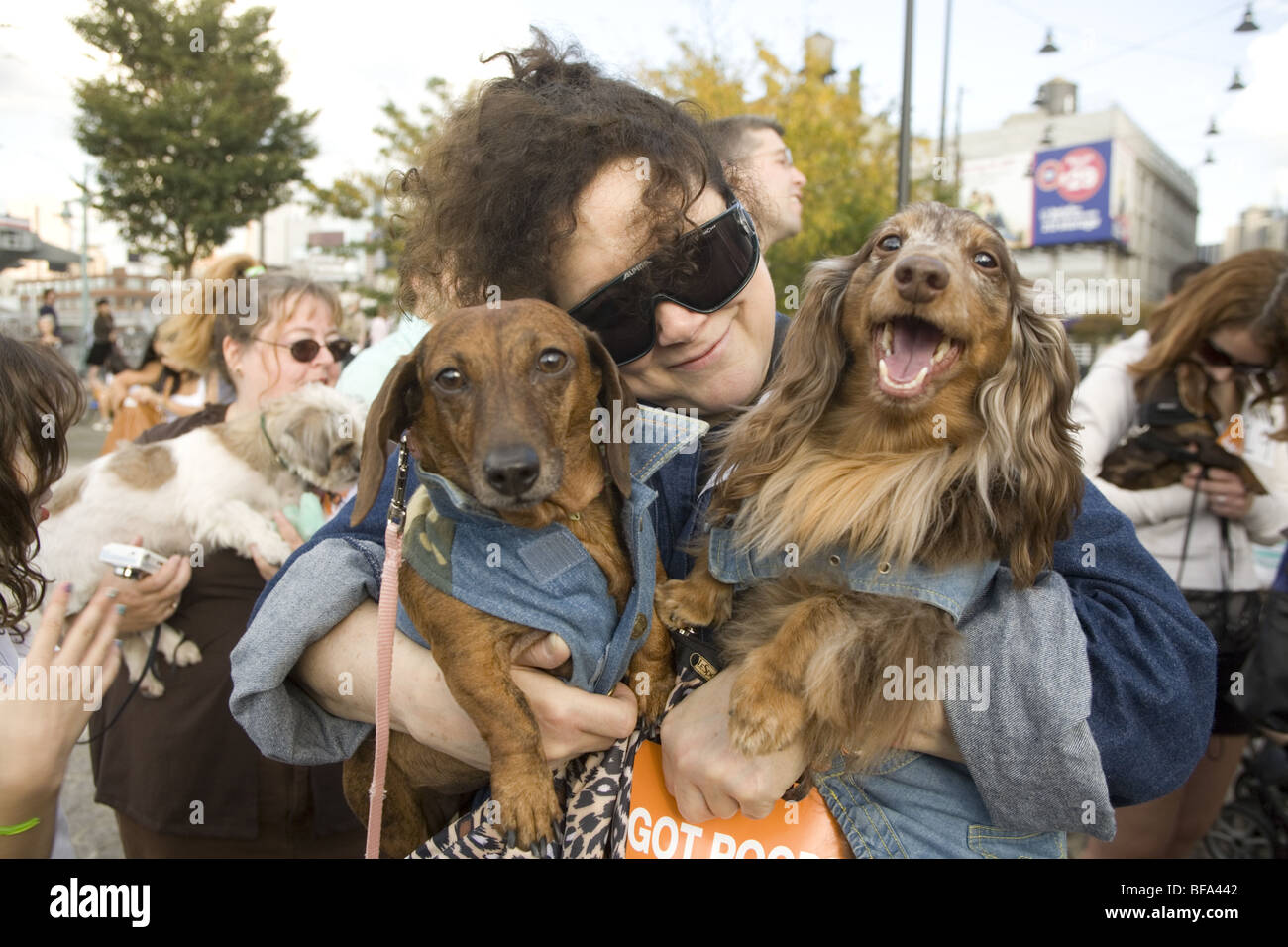 2009: New York CIty, 3rd Annual dog parade and contest at Pier 84 in Manhattan. Stock Photo