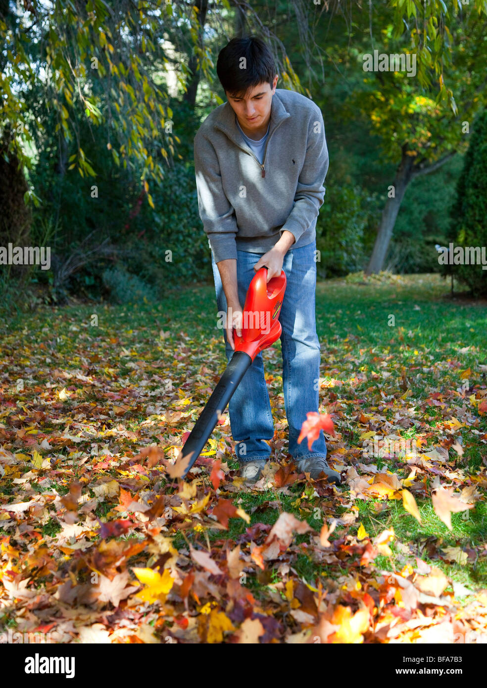 Yard Cleanup Stock Photos Amp Yard Cleanup Stock Images Alamy
