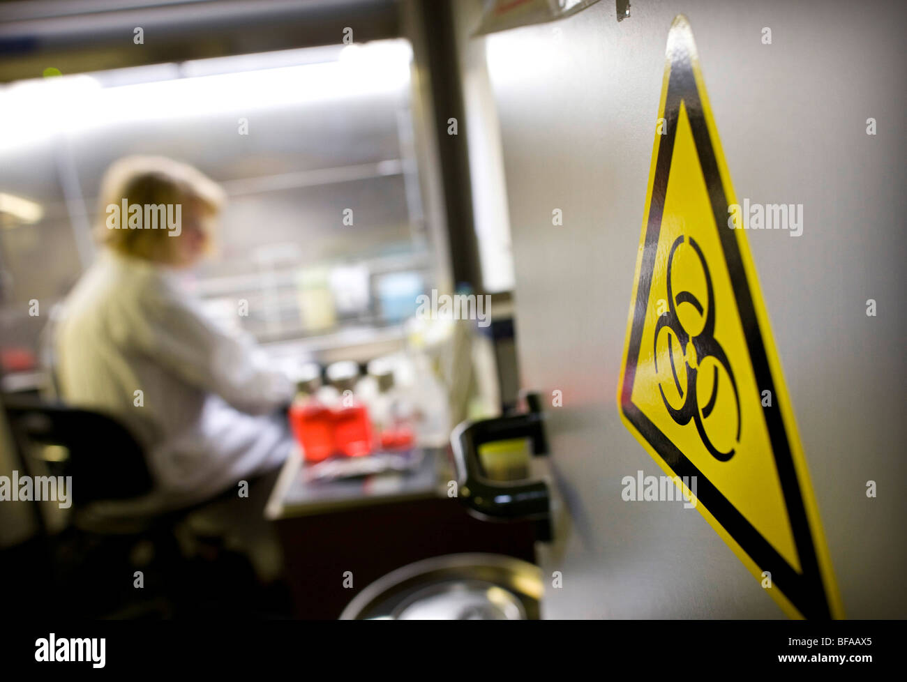 Laboratory assistant in a labour for Clinical diagnostics of influenza viruses at Robert Koch-Institute . Berlin Stock Photo
