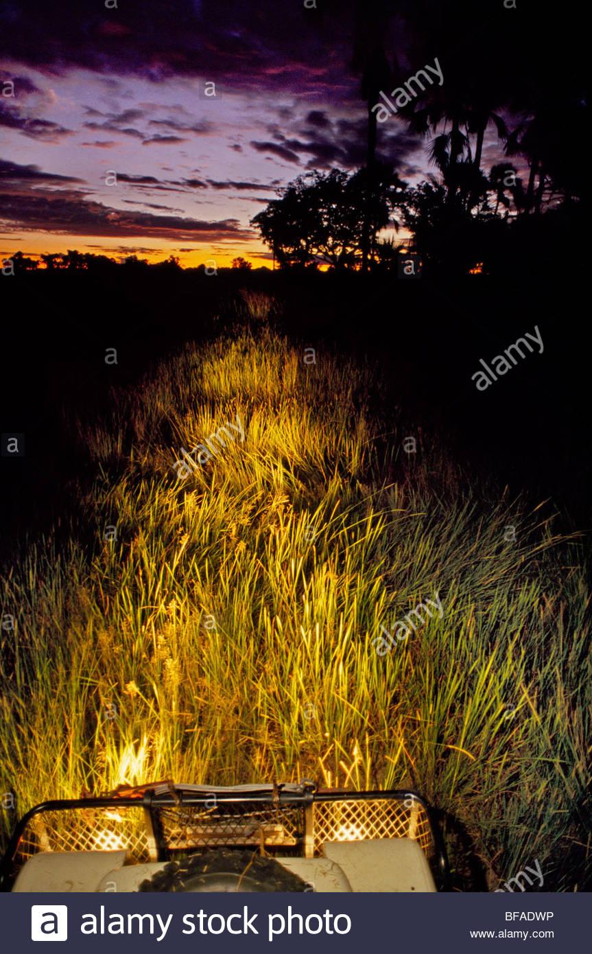 Vehicle at dusk, Okavango Delta, Botswana Stock Photo
