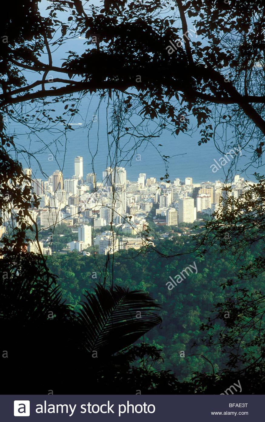 Rainforest next to city sprawl, Rio de Janeiro, Brazil - Stock Image