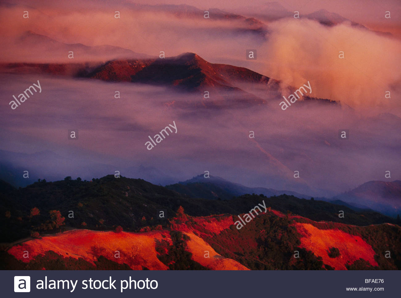 Smoke and fog mix during forest fire, Big Sur, California - Stock Image
