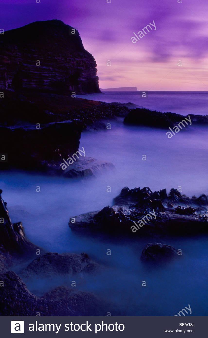 Coastline at dusk, New Island, Falkland Islands - Stock Image