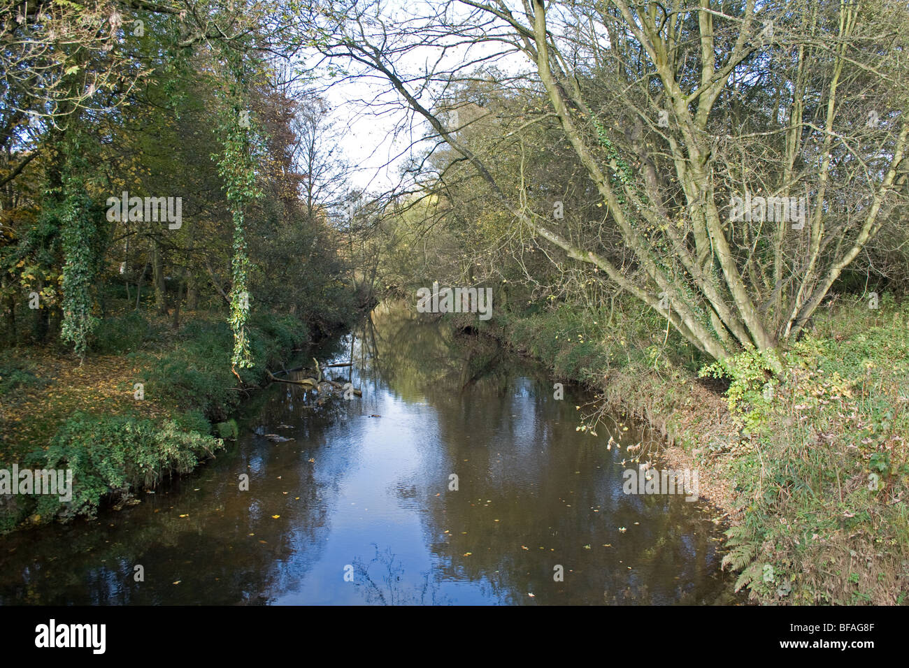 River Churnet at Cheddleton, Staffordshire - Stock Image