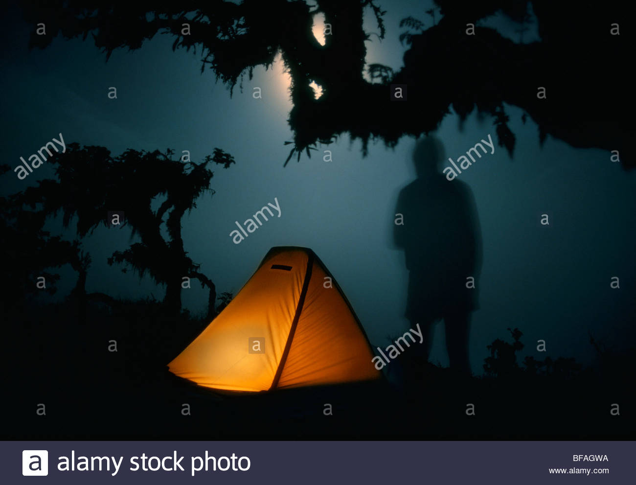 Camper at full moon, Alcedo Volcano, Galapagos Islands - Stock Image