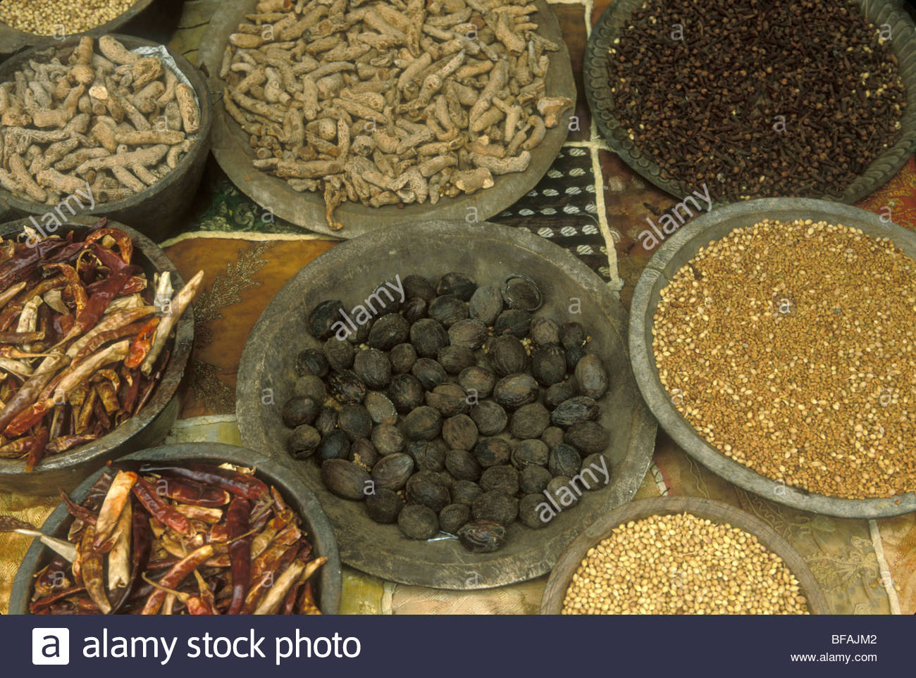 Spices grown in Western Ghats, Cochin, Kerala, India - Stock Image