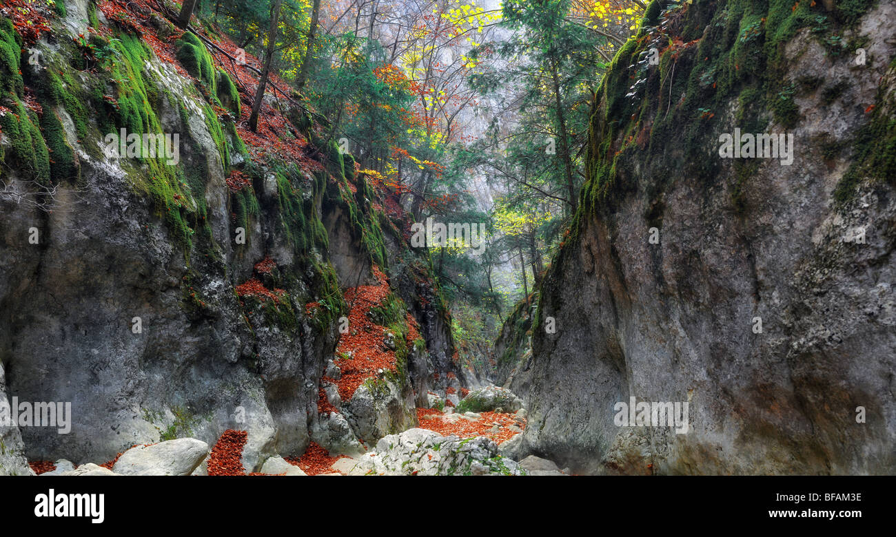 Track in gorge of the Grand Canyon of Crimea in the autumn - Stock Image