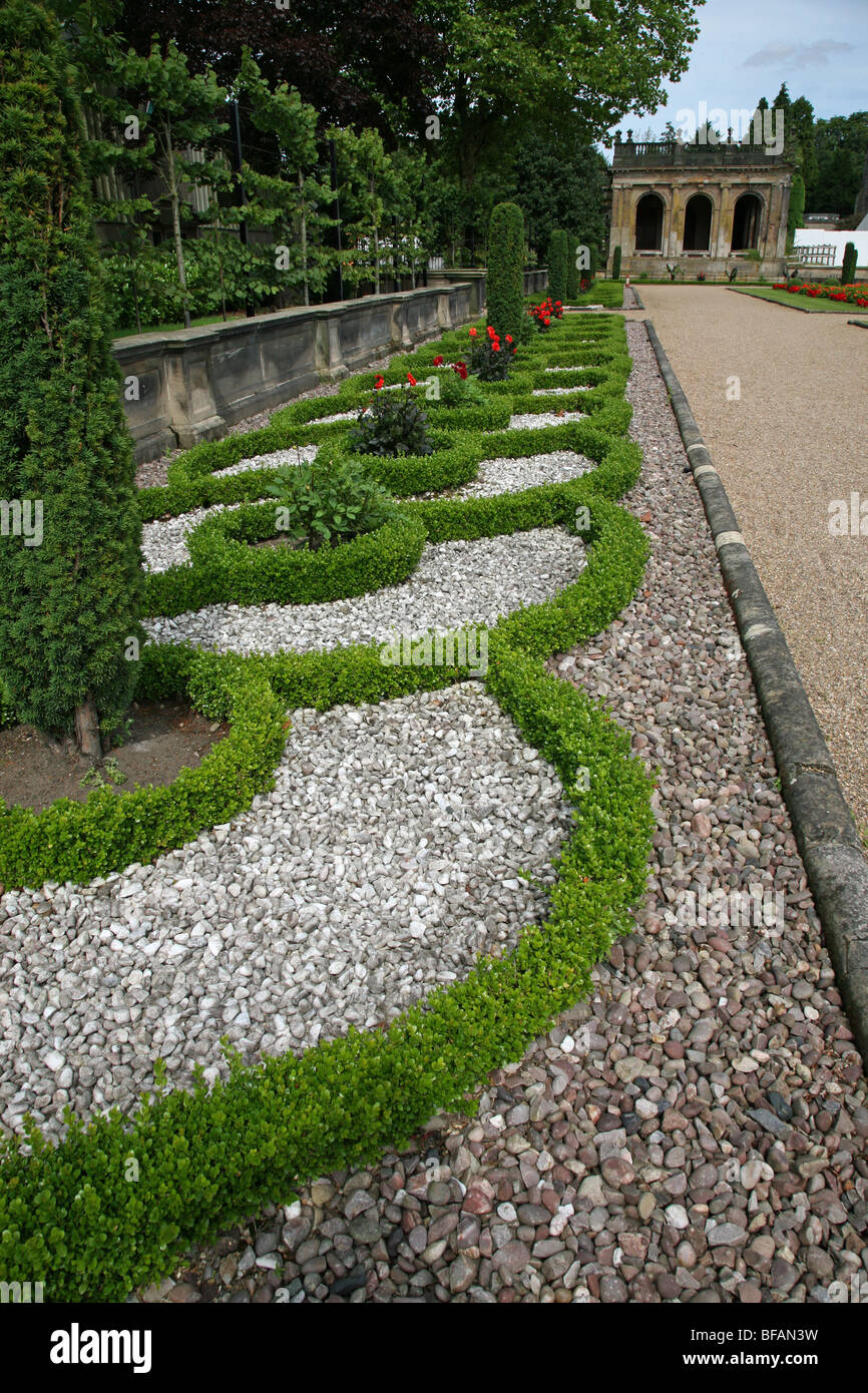 Yew  and box hedging at Trentham Gardens, Stoke-on-Trent - Stock Image