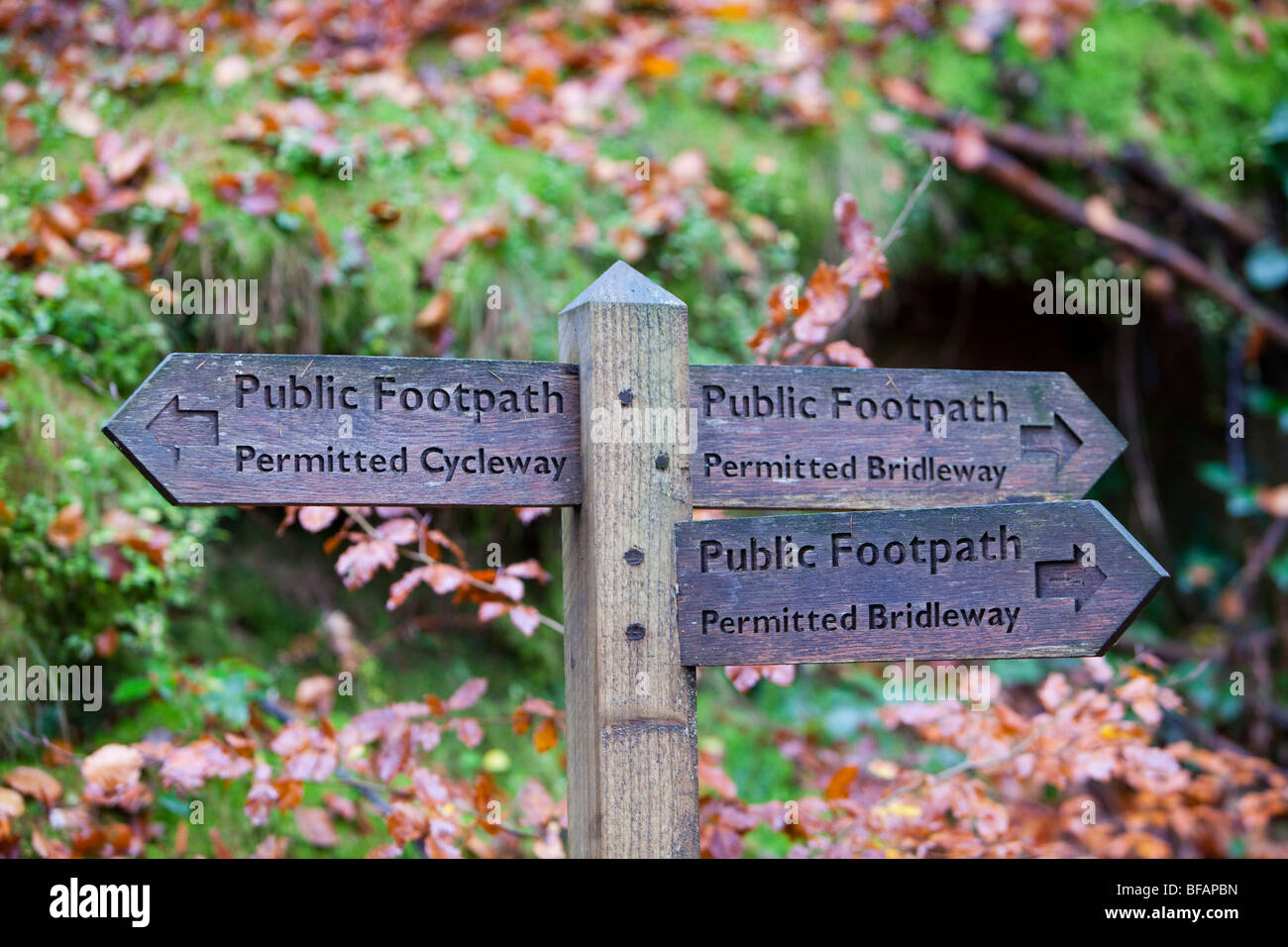 A permitted bridleway and footpath sign in the Lake District, UK - Stock Image