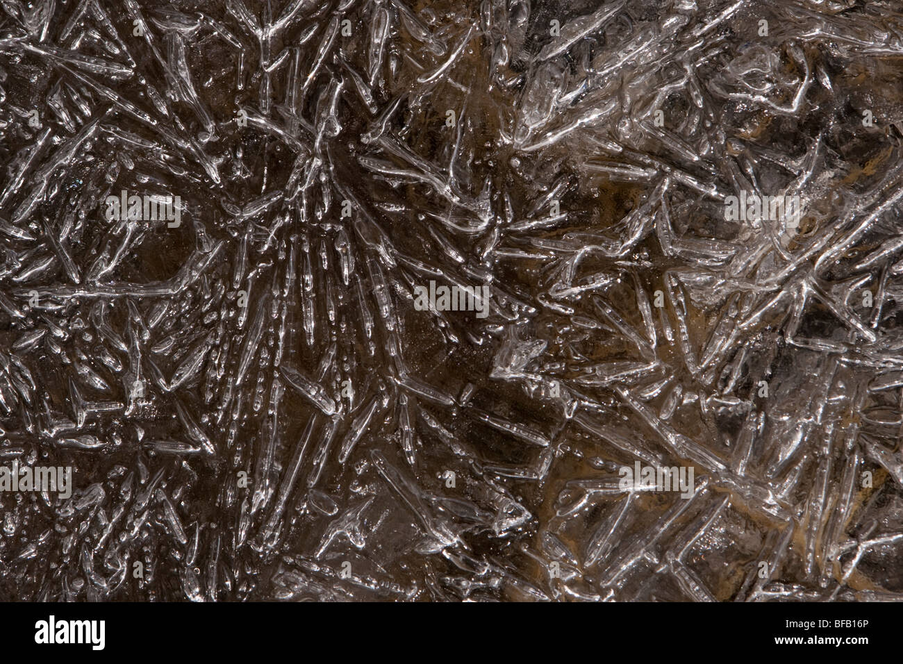 Frozen ice crystals photographed at Summit Lake at Mount Evans in Colorado. - Stock Image