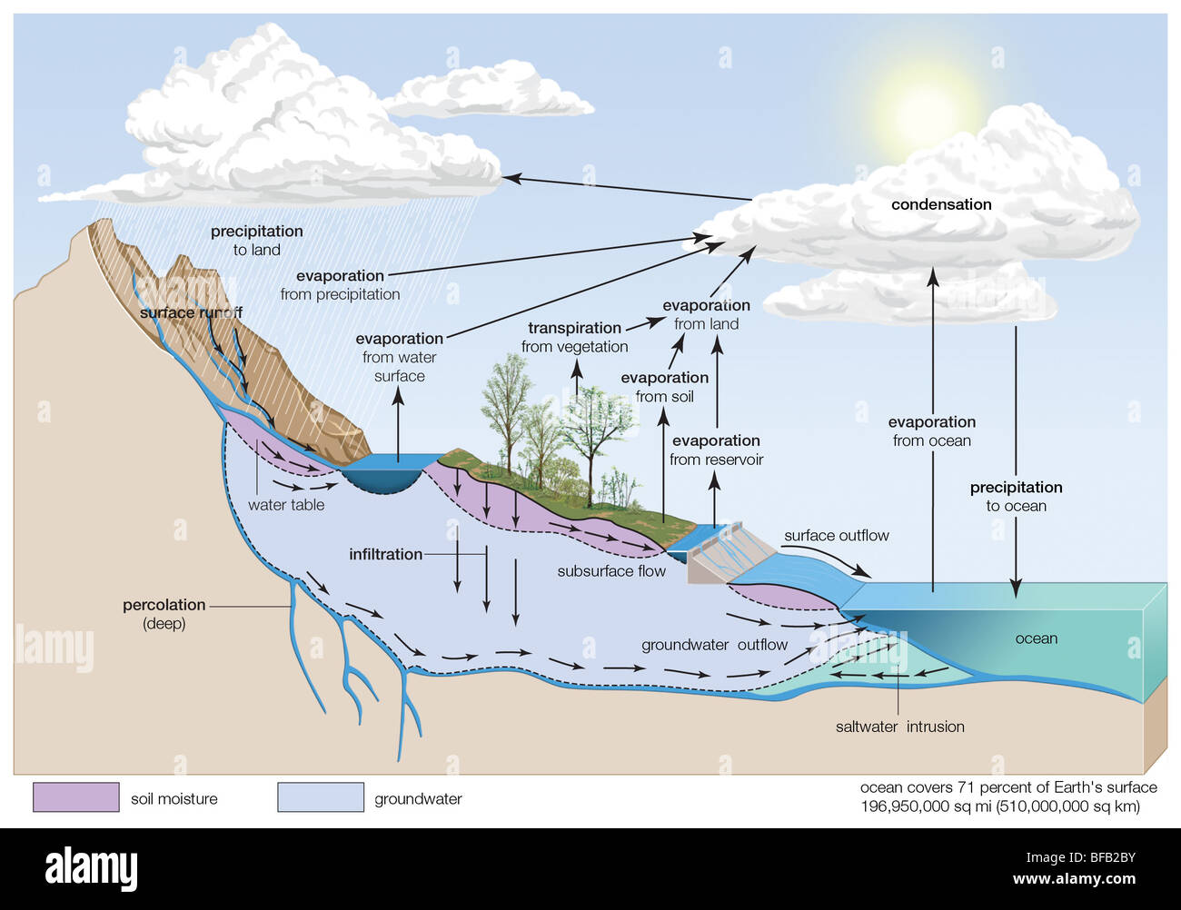 Water cycle - Stock Image
