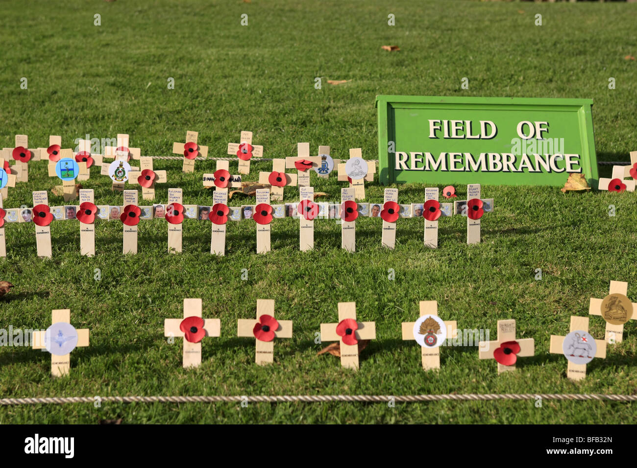 Field of Remembrance - November 11 Armistice Day - Stock Image