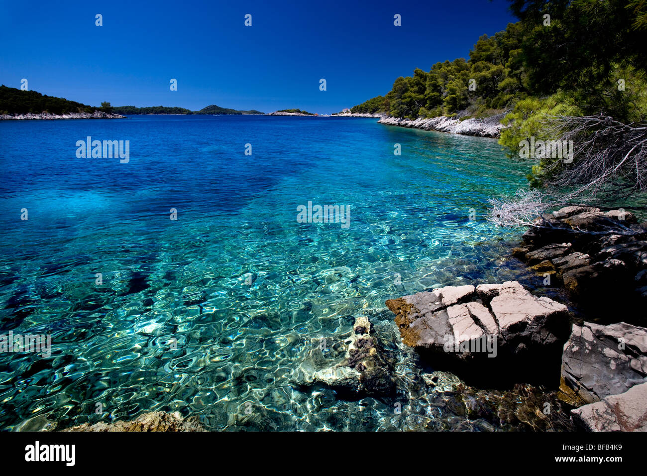 Beautiful secluded bay with crystal clear waters on Korcula Island - Stock Image
