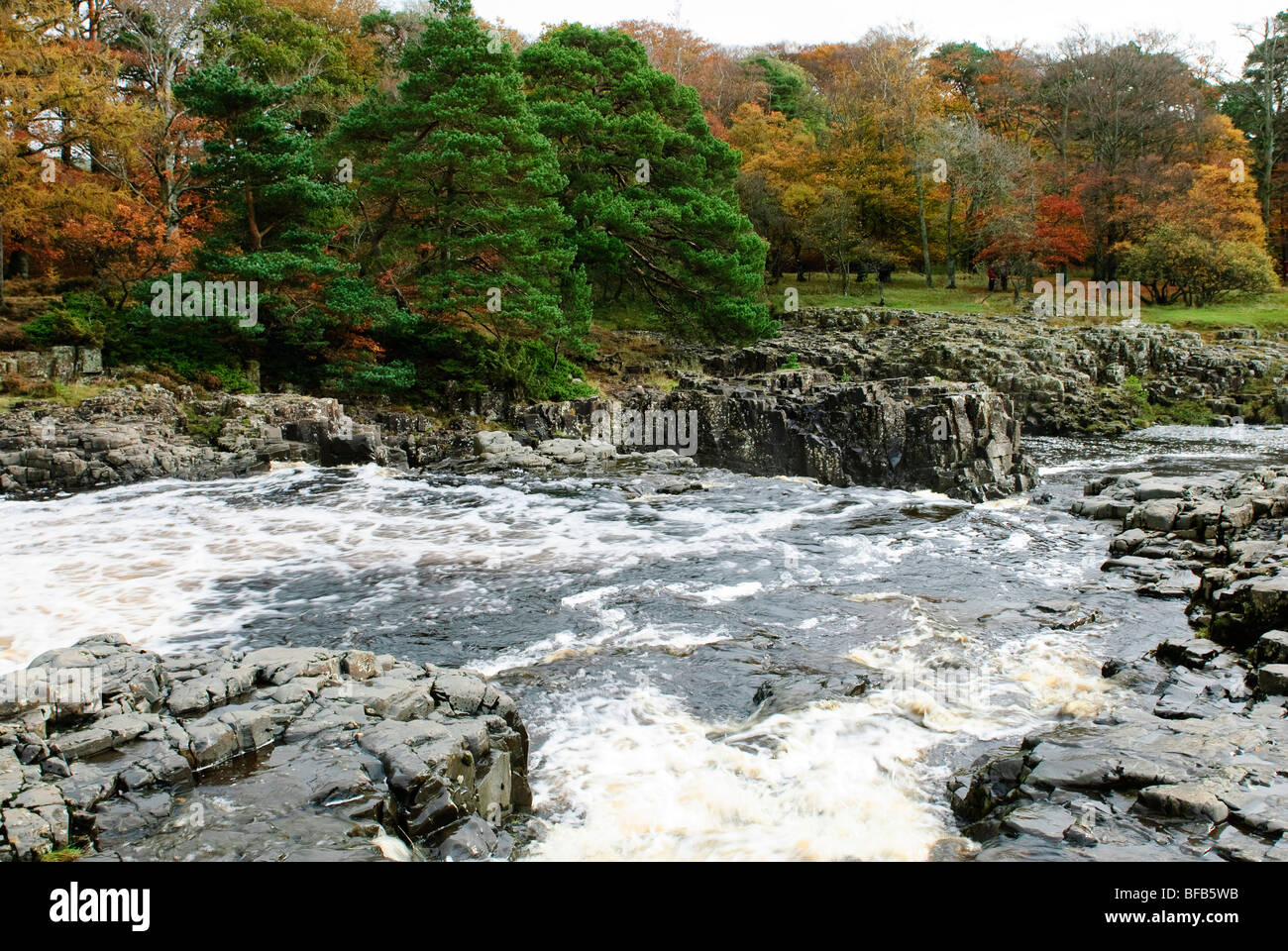 Low Force Waterfall, Upper Teesdale - Stock Image
