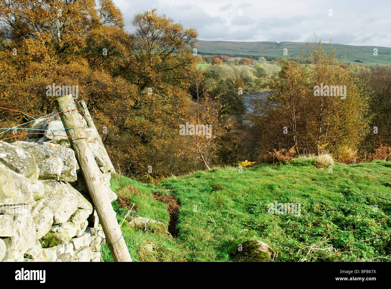 Upper Teesdale in Autumn colours - Stock Image