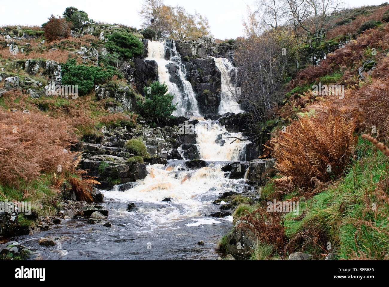 Bleabeck Force in Autumn - Stock Image