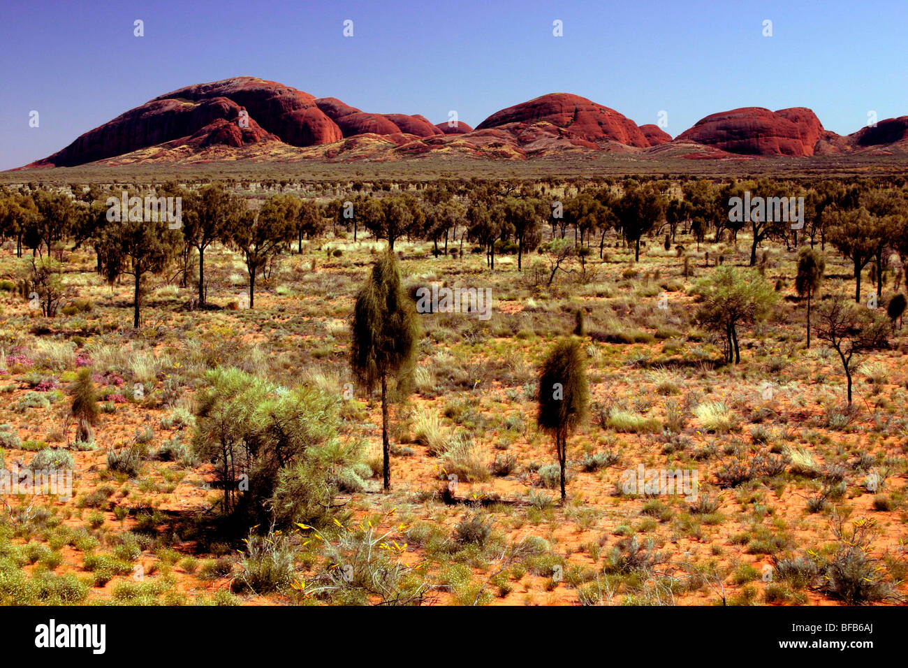 View of Kata Tjuta 'The Olgas', Australia - Stock Image