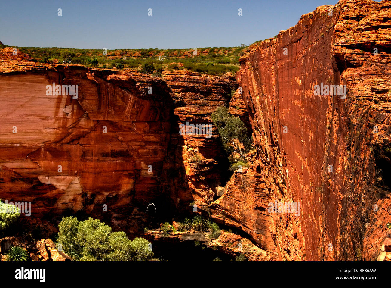 View into Kings Canyon from the rim walk, Northern Territory, Australia - Stock Image