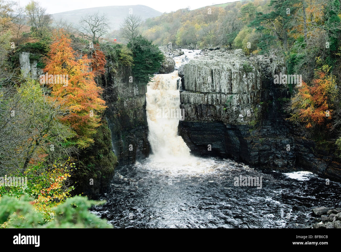 High Force waterfall in Autumn - Stock Image