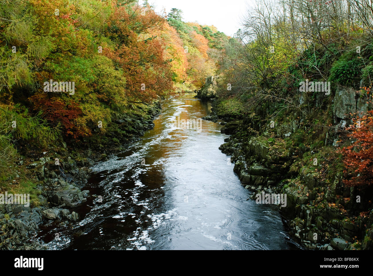 River Tees in Autumn - Stock Image
