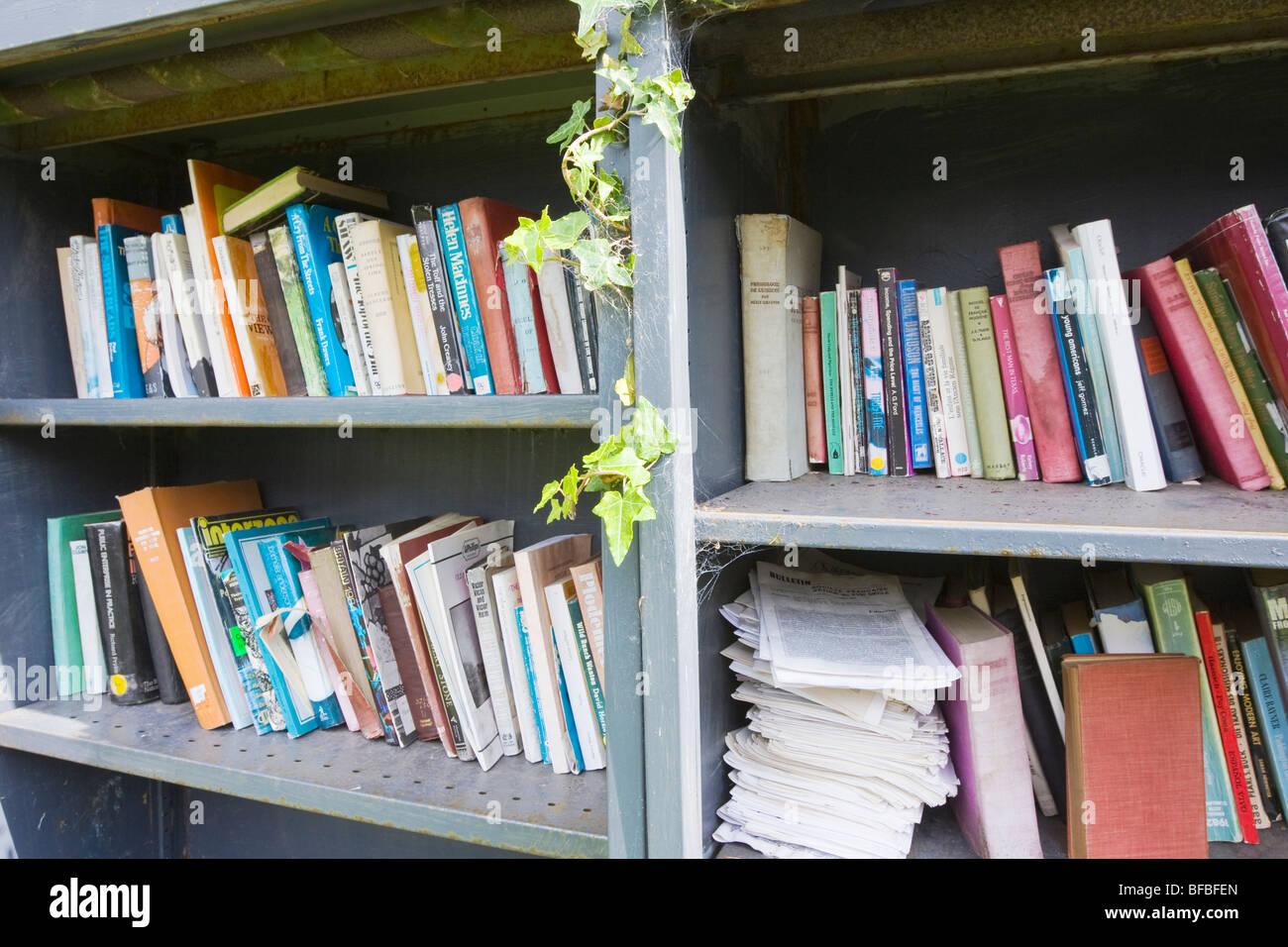 Shelves full of secondhand books - Stock Image