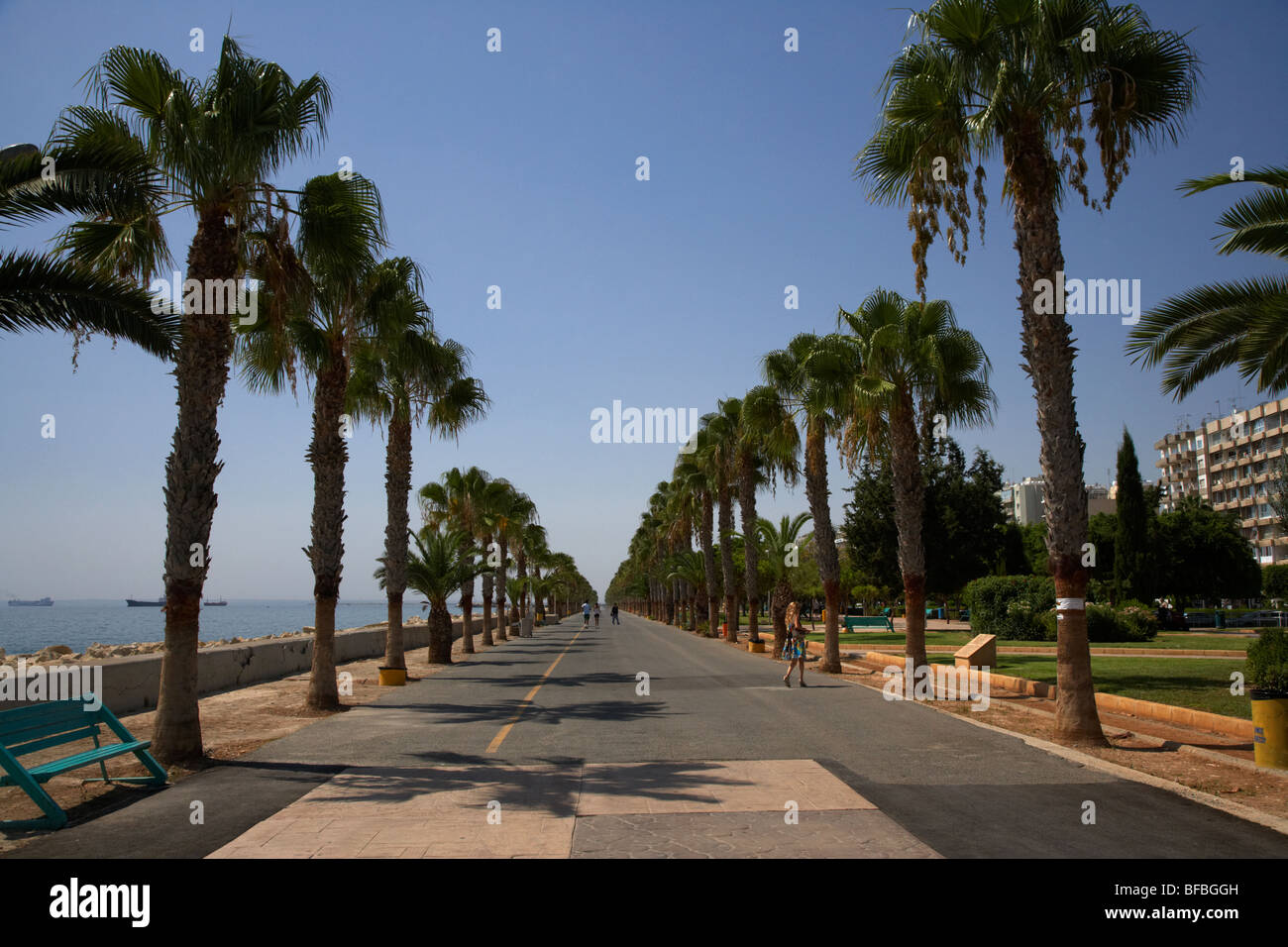 palm tree lined seafront promenade in twin cities park on reclaimed land Limassol lemesos republic of cyprus europe - Stock Image