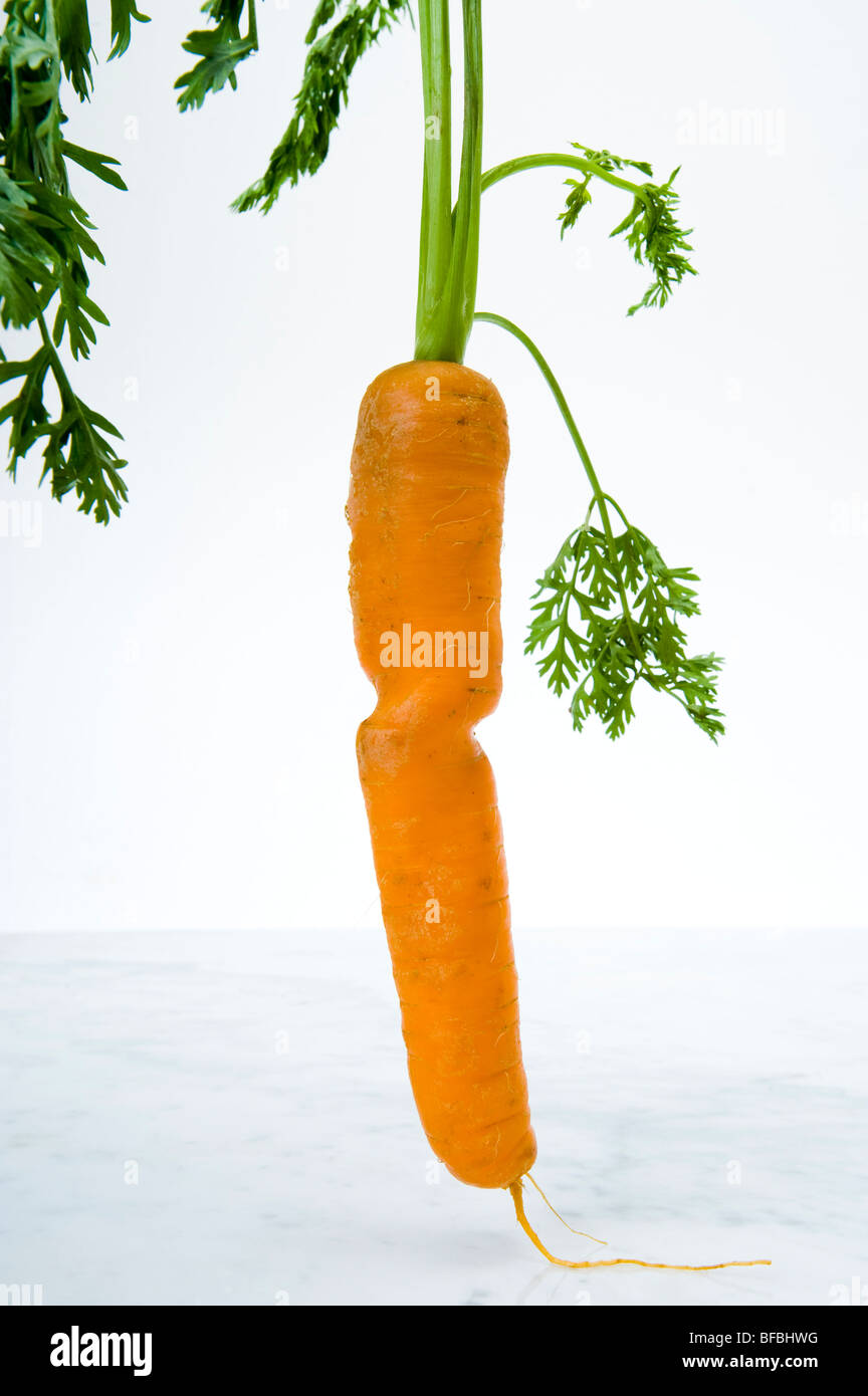 anorexia carrot slim bodice midriff midsection waist narrow-waist tall trim trimming food freak deformed - Stock Image