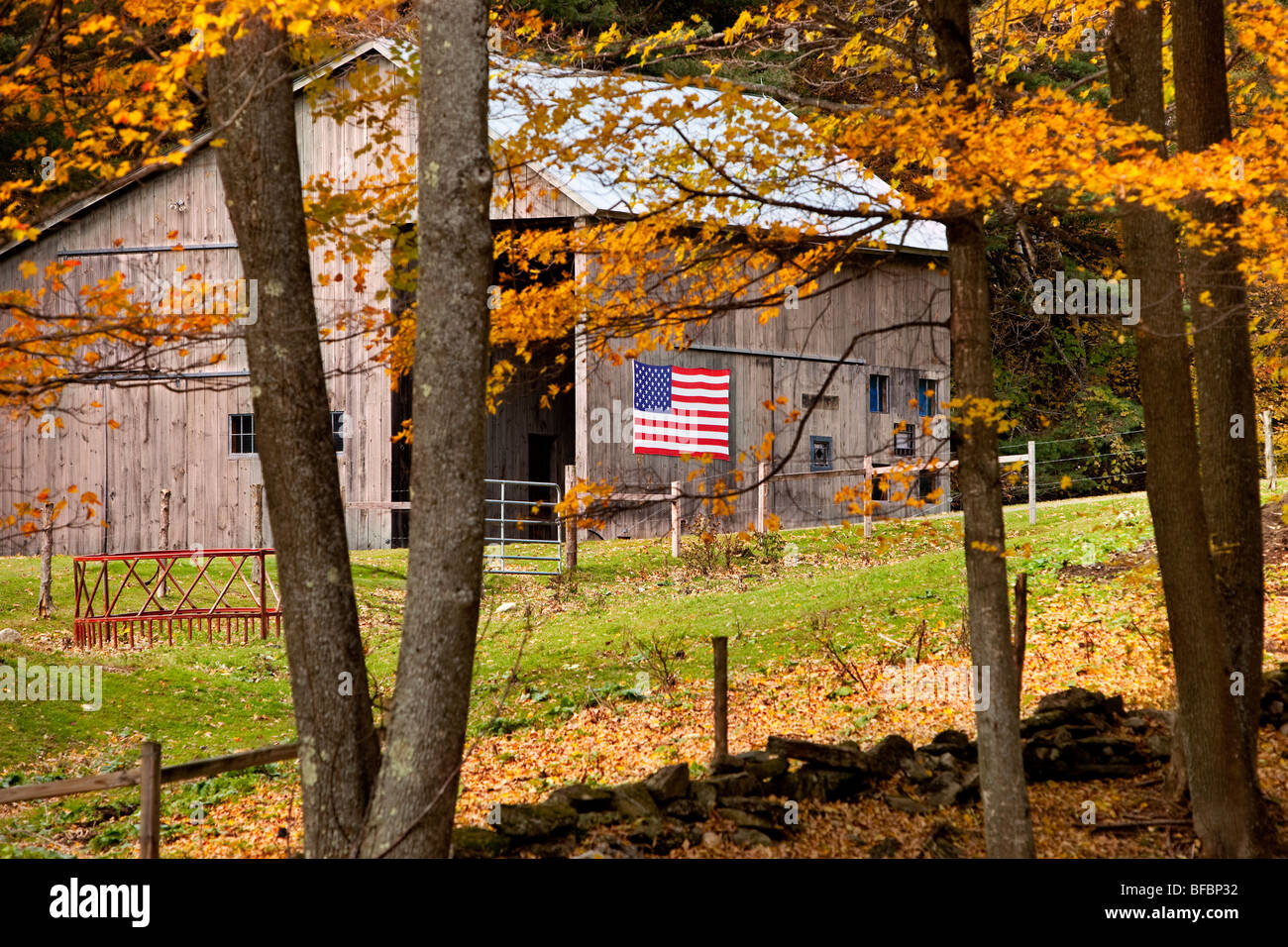 Barn with American flag in autumn near Woodstock Vermont USA - Stock Image