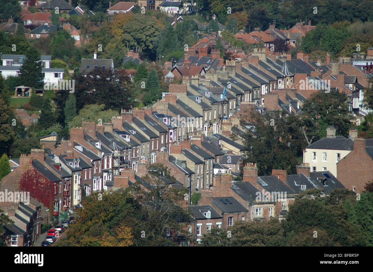 aerial view of terraced housing, Durham, England, UK - Stock Image