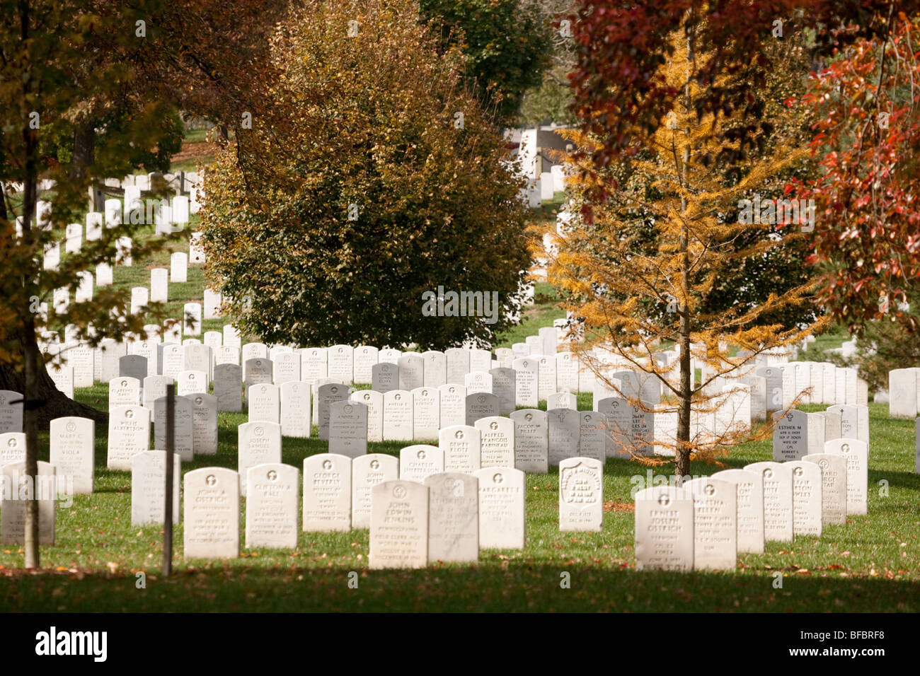 Autumn Fall In Arlington Cemetery Stock Photos & Autumn Fall In ...