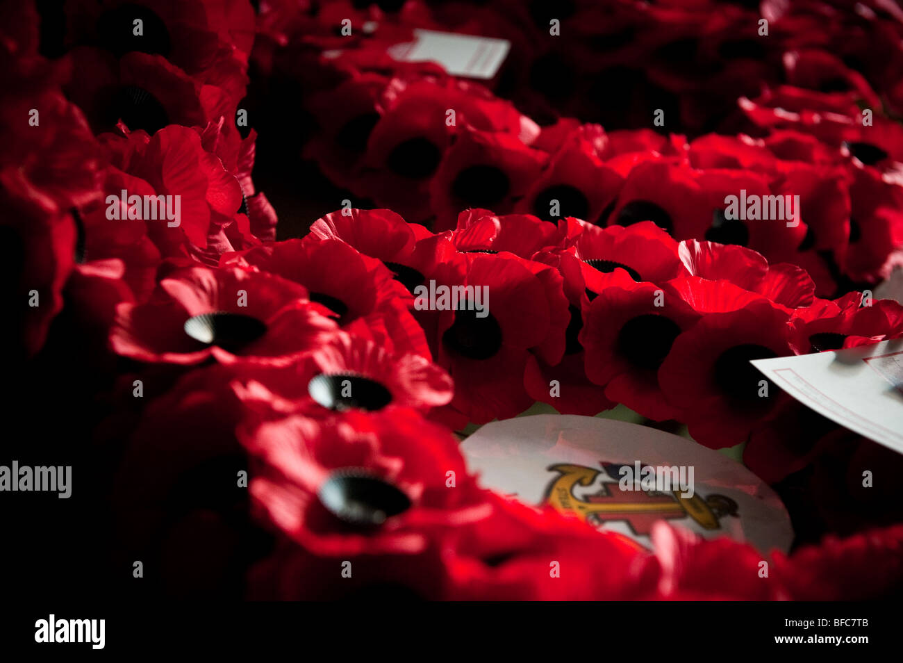 Poppy Wreaths on Remembrance Sunday - Stock Image