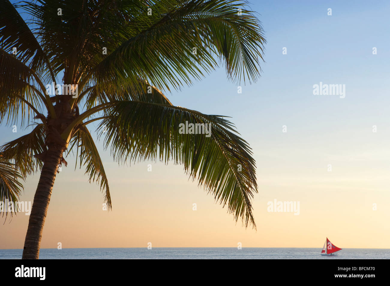 Palm tree and red sail boat at sunset Boracay; The Visayas; Philippines. - Stock Image
