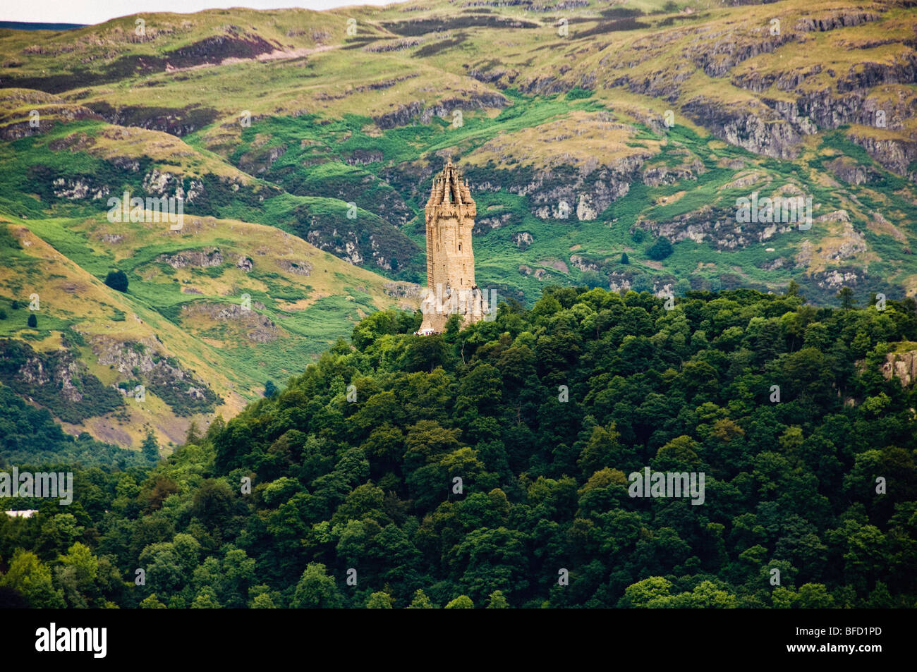 Wallis Monument surrounded by trees - Stock Image