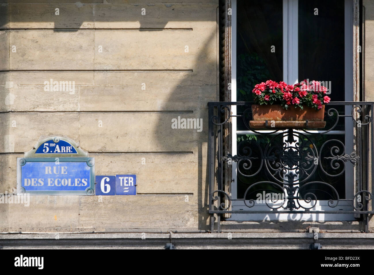 Flower box on the balcony of a building located in the Latin Quarter of Paris, France. - Stock Image