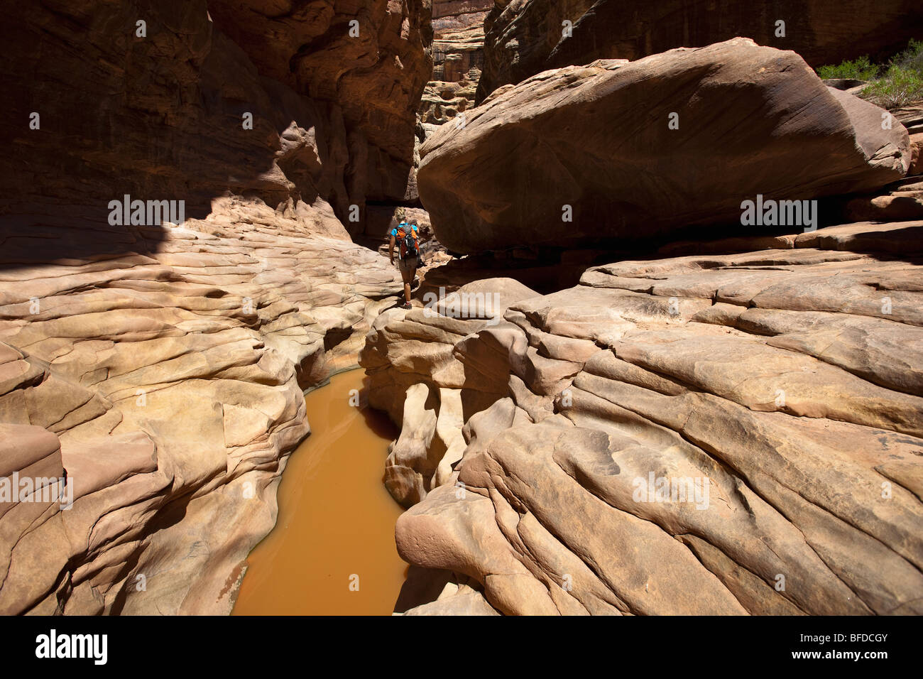 A woman hiking through a canyon with water and interesting rock formations in Utah. - Stock Image