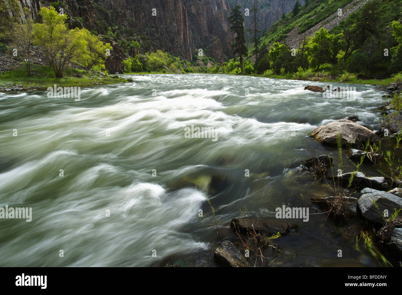 The Gunnison River in the Black Canyon Gorge, Colorado. (motion blur) - Stock Image