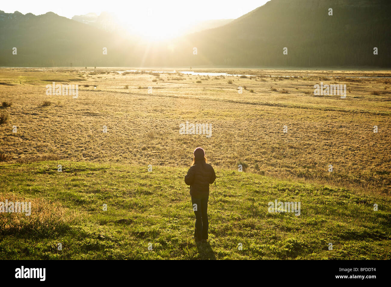 A woman drinks coffee and watches the sunrise from a field in Yellowstone National Park. - Stock Image